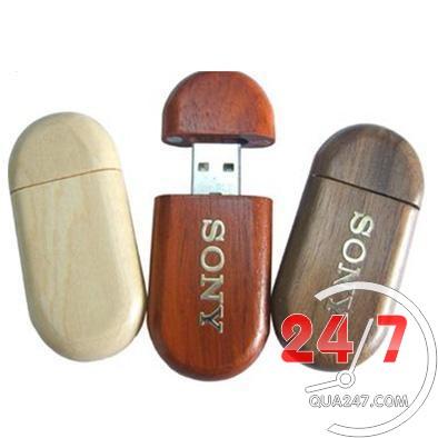 USB-Go-05a USB 05 - USB gỗ