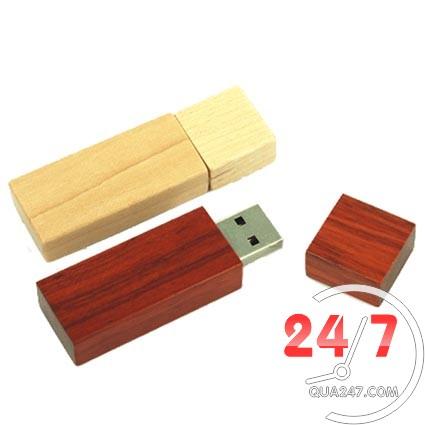 USB-Go-06b USB 16 - usb gỗ