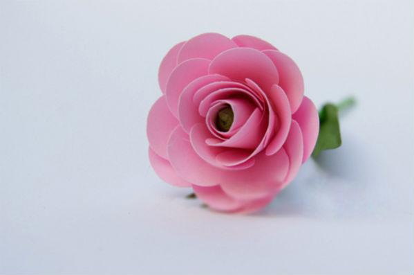 hoa-hong-giay-don-gian Hướng dẫn làm quà tặng bông hồng bằng giấy